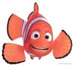 pesce pagliaccio.jpg